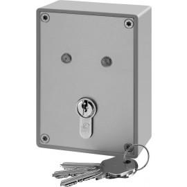 Interrupteurs à clé pour systèmes d'alarme