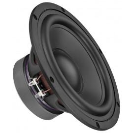 Haut-parleur de grave Hi-Fi, 100 W, 8 Ω