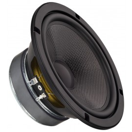 Haut-parleur de grave-médium miniature professionnel, 100 W, 4 Ω