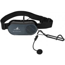 Amplificateur discours mobile avec entrée ligne